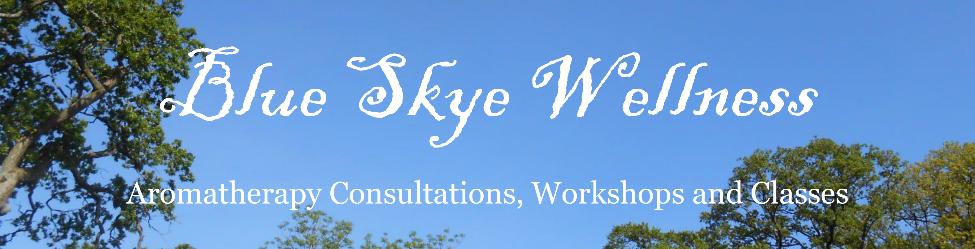 Blue Skye Wellness